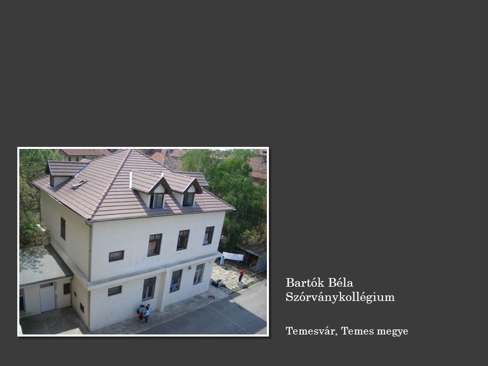 Bartók Béla Szórványkollégium Temesvár, Temes megye