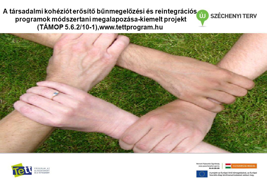 Áldozatsegítő szolgáltatások fejlesztése alprojekt Az érdemi munka 2010.év végén vette kezdetét.