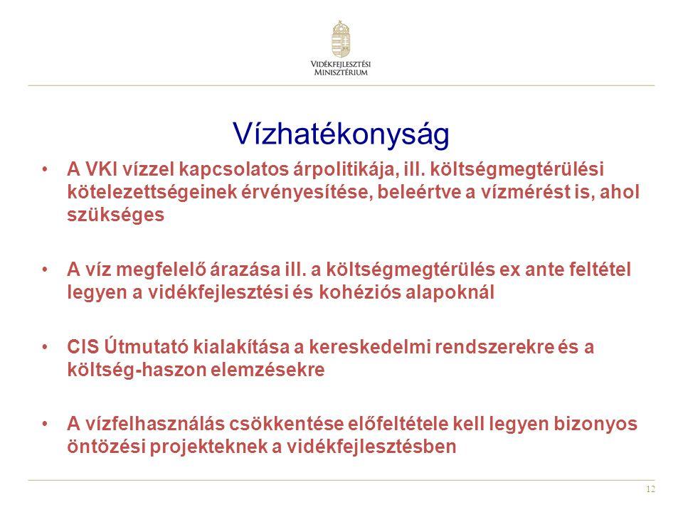 12 Vízhatékonyság A VKI vízzel kapcsolatos árpolitikája, ill.