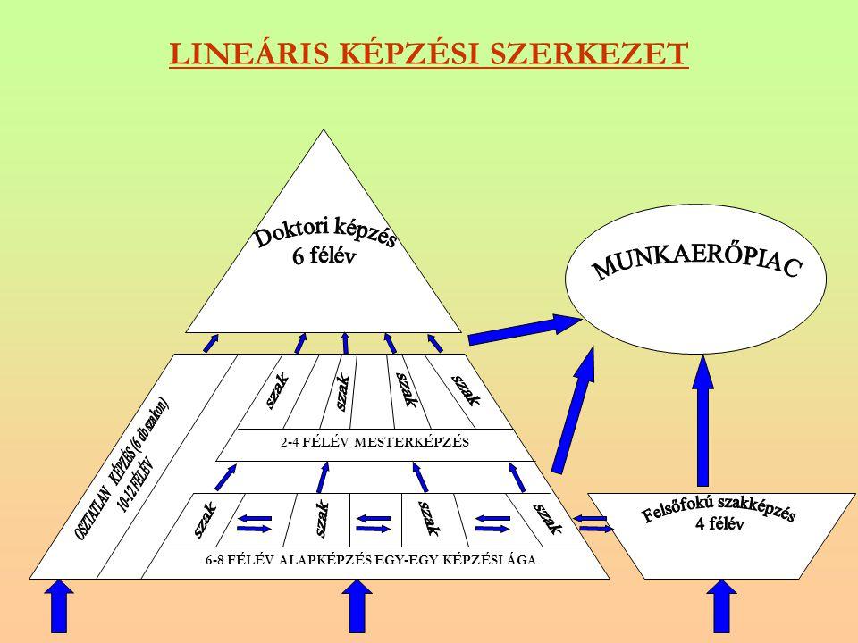 LINEÁRIS KÉPZÉSI SZERKEZET 6-8 FÉLÉV ALAPKÉPZÉS EGY-EGY KÉPZÉSI ÁGA 2-4 FÉLÉV MESTERKÉPZÉS