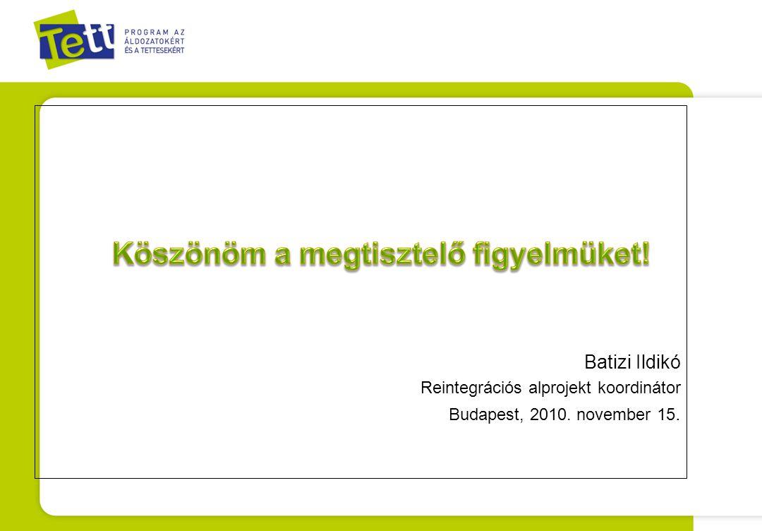 Batizi Ildikó Reintegrációs alprojekt koordinátor Budapest, 2010. november 15.