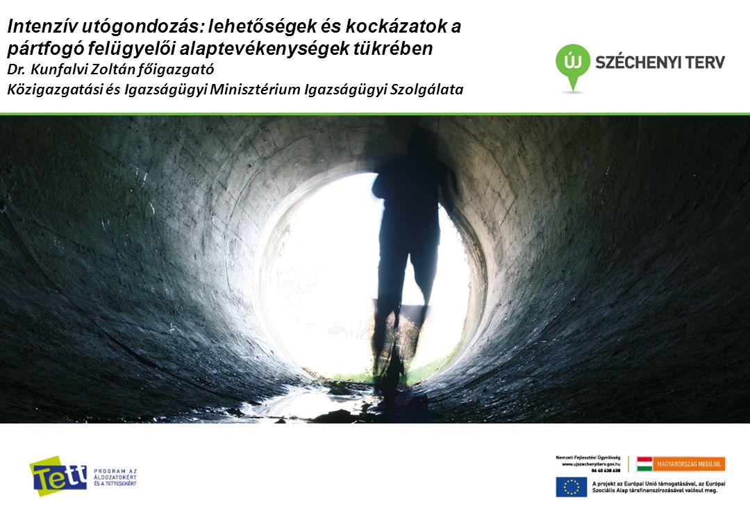 Tett program az áldozatokért és a tettesekért A KIMISZ által megvalósított alprojektek: Áldozatsegítő szolgáltatások fejlesztése Közösségi Foglalkoztató fejlesztése Közérdekű munka büntetés végrehajtásának fejlesztése Elítéltek több szakaszos, társadalmi és munkaerő-piaci reintegrációja és az intenzív utógondozás modelljének kialakítása
