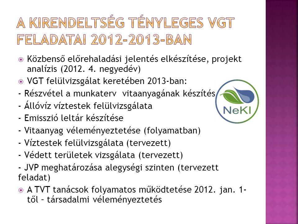  Közbenső előrehaladási jelentés elkészítése, projekt analízis (2012.