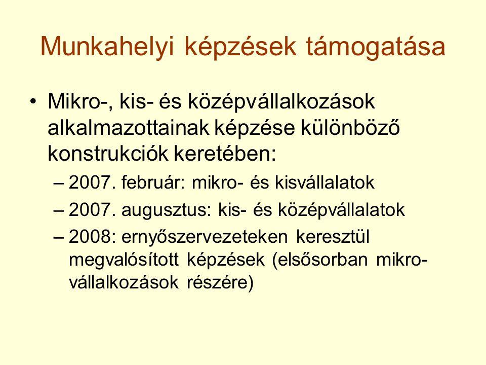 Munkahelyi képzések támogatása Mikro-, kis- és középvállalkozások alkalmazottainak képzése különböző konstrukciók keretében: –2007. február: mikro- és