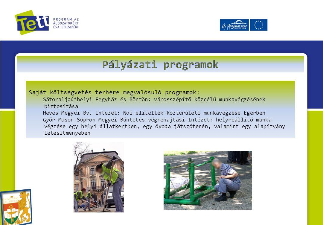 Saját költségvetés terhére megvalósuló programok: Sátoraljaújhelyi Fegyház és Börtön: városszépítő közcélú munkavégzésének biztosítása Heves Megyei Bv.