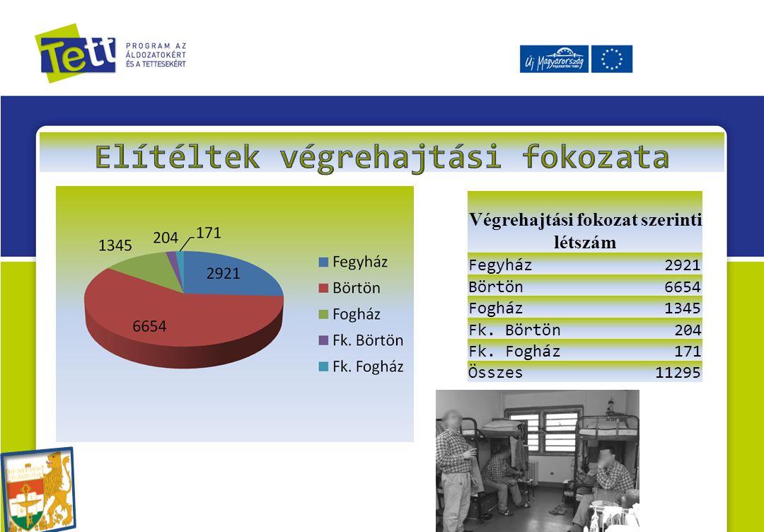 Végrehajtási fokozat szerinti létszám Fegyház2921 Börtön6654 Fogház1345 Fk. Börtön204 Fk. Fogház171 Összes11295