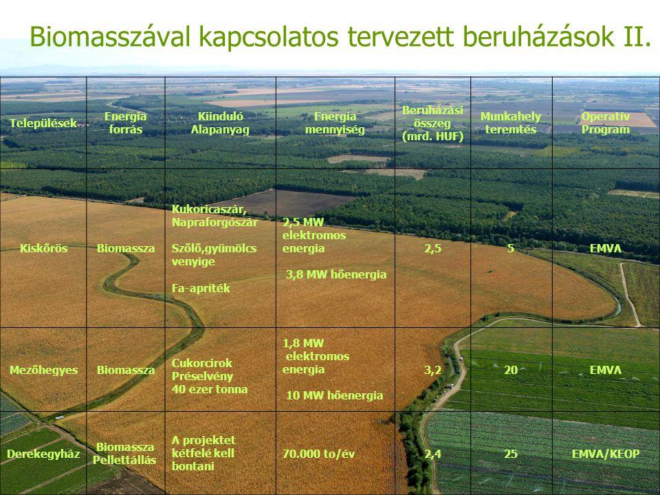 Biomasszával kapcsolatos tervezett beruházások II.