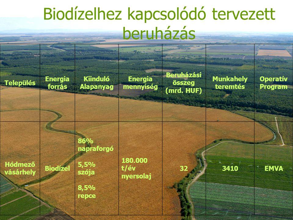 Biodízelhez kapcsolódó tervezett beruházás Település Energia forrás Kiinduló Alapanyag Energia mennyiség Beruházási összeg (mrd.