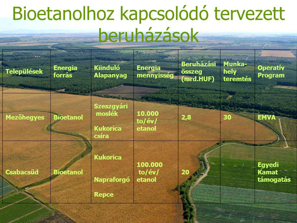 Bioetanolhoz kapcsolódó tervezett beruházások Települések Energia forrás Kiinduló Alapanyag Energia mennyisség Beruházási összeg (mrd.HUF) Munka- hely teremtés Operatív Program MezőhegyesBioetanol Szeszgyári moslék Kukorica csíra 10.000 to/év/ etanol 2,830EMVA CsabacsüdBioetanol Kukorica Napraforgó Repce 100.000 to/év/ etanol 20 Egyedi Kamat támogatás