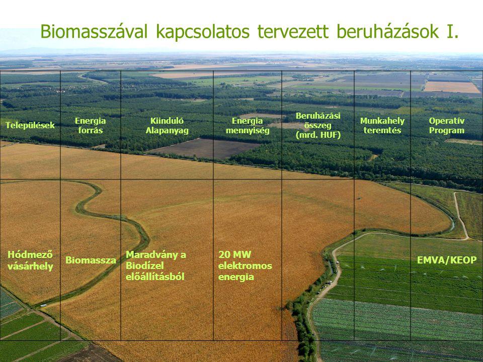 Biomasszával kapcsolatos tervezett beruházások I.