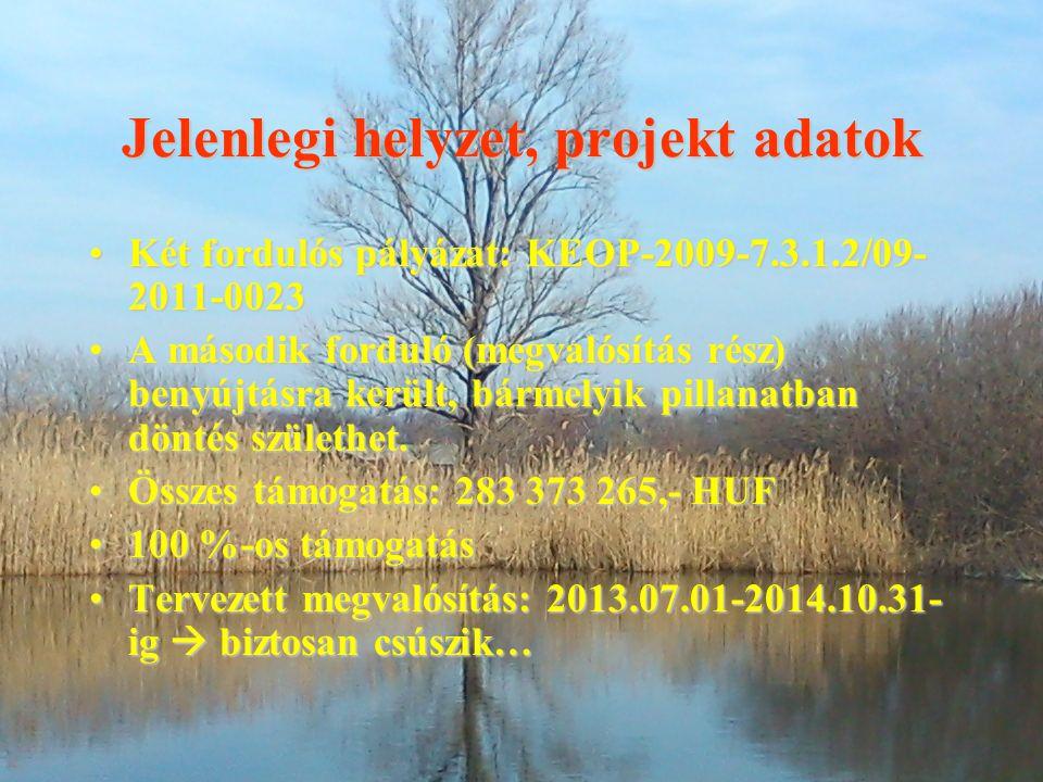 Jelenlegi helyzet, projekt adatok Két fordulós pályázat: KEOP-2009-7.3.1.2/09- 2011-0023Két fordulós pályázat: KEOP-2009-7.3.1.2/09- 2011-0023 A másod