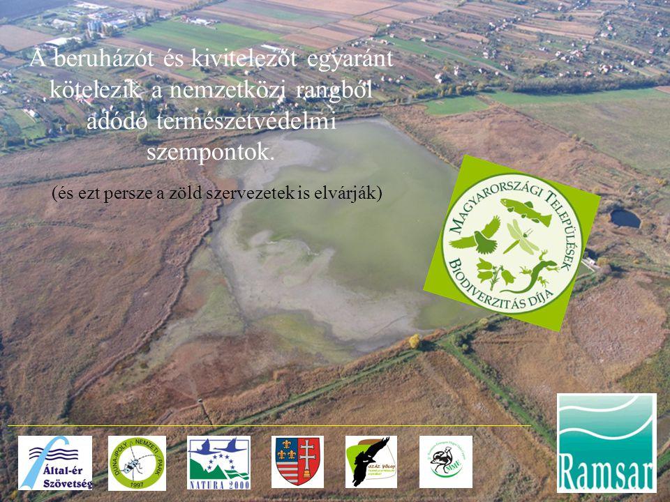 A beruházót és kivitelezőt egyaránt kötelezik a nemzetközi rangból adódó természetvédelmi szempontok. (és ezt persze a zöld szervezetek is elvárják)