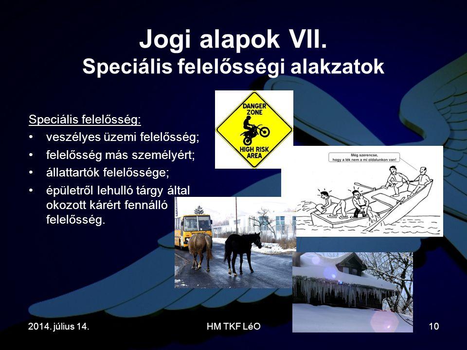 2014. július 14.HM TKF LéO10 Speciális felelősség: veszélyes üzemi felelősség; felelősség más személyért; állattartók felelőssége; épületről lehulló t