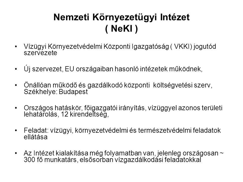 Nemzeti Környezetügyi Intézet ( NeKI ) Vízügyi Környezetvédelmi Központi Igazgatóság ( VKKI) jogutód szervezete Új szervezet, EU országaiban hasonló i