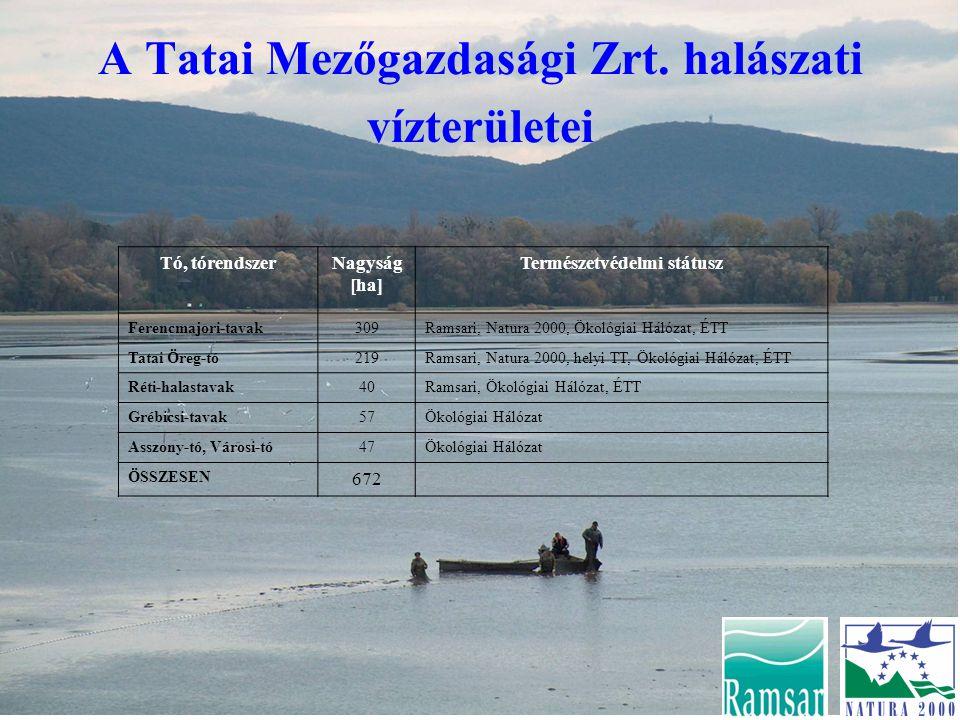 A Tatai Mezőgazdasági Zrt. halászati vízterületei Tó, tórendszerNagyság [ha] Természetvédelmi státusz Ferencmajori-tavak309Ramsari, Natura 2000, Ökoló
