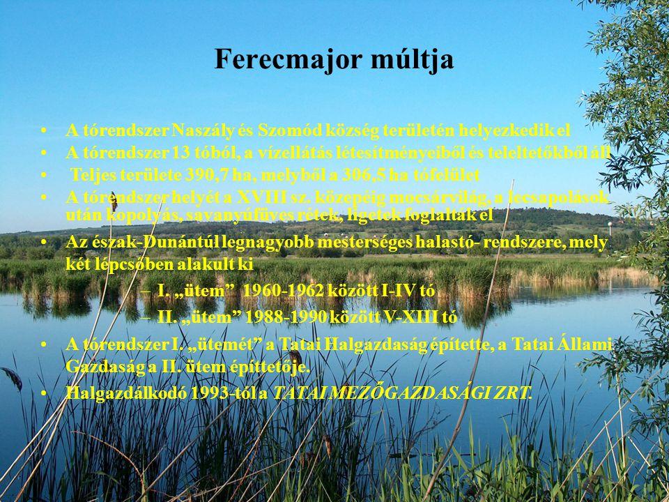 Ferecmajor múltja A tórendszer Naszály és Szomód község területén helyezkedik el A tórendszer 13 tóból, a vízellátás létesítményeiből és teleltetőkből áll Teljes területe 390,7 ha, melyből a 306,5 ha tófelület A tórendszer helyét a XVIII sz.