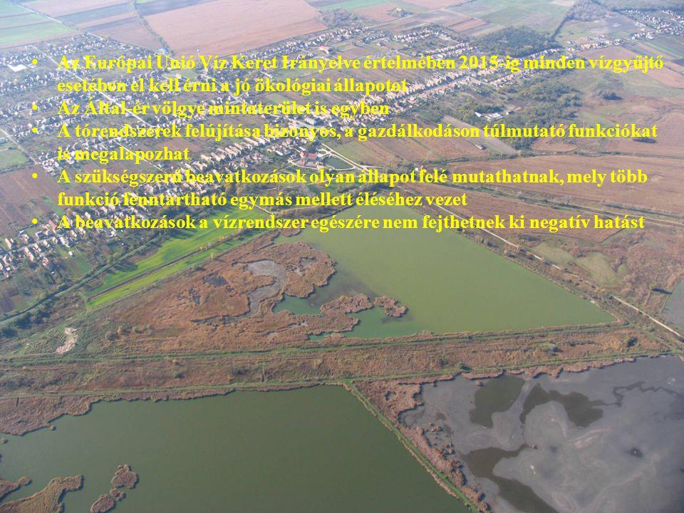 Az Európai Unió Víz Keret Irányelve értelmében 2015-ig minden vízgyűjtő esetében el kell érni a jó ökológiai állapotot Az Által-ér völgye mintaterület is egyben A tórendszerek felújítása bizonyos, a gazdálkodáson túlmutató funkciókat is megalapozhat A szükségszerű beavatkozások olyan állapot felé mutathatnak, mely több funkció fenntartható egymás mellett éléséhez vezet A beavatkozások a vízrendszer egészére nem fejthetnek ki negatív hatást