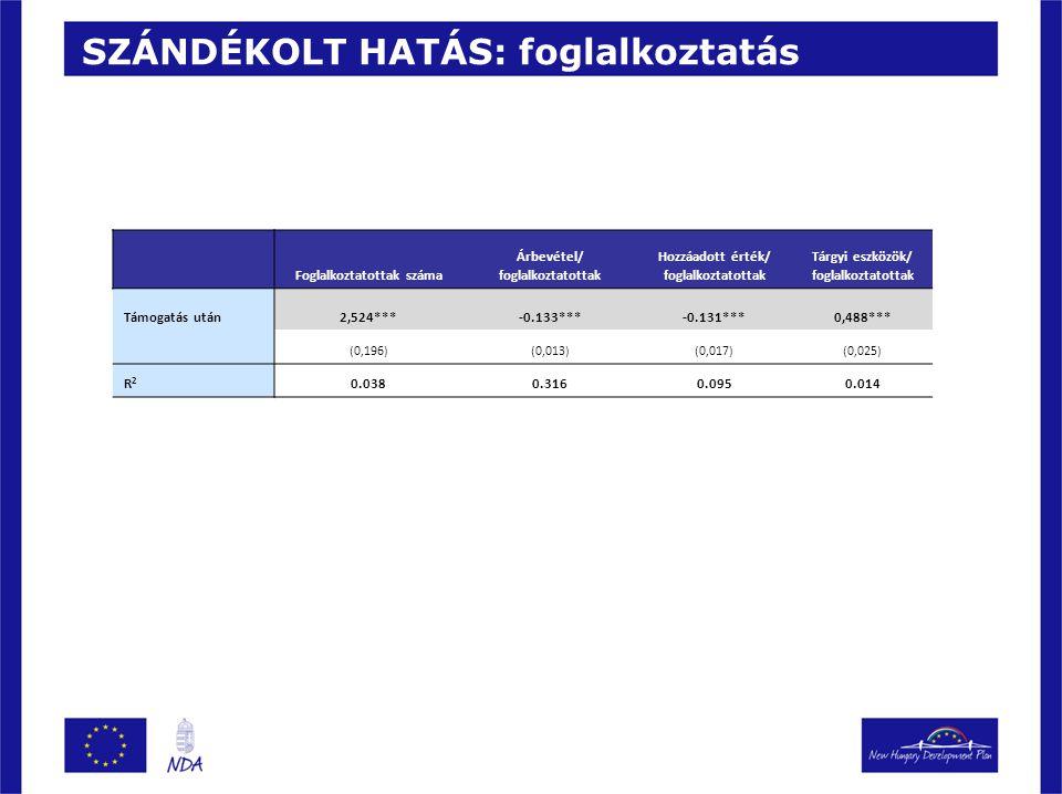 SZÁNDÉKOLT HATÁS: foglalkoztatás Foglalkoztatottak száma Árbevétel/ foglalkoztatottak Hozzáadott érték/ foglalkoztatottak Tárgyi eszközök/ foglalkozta