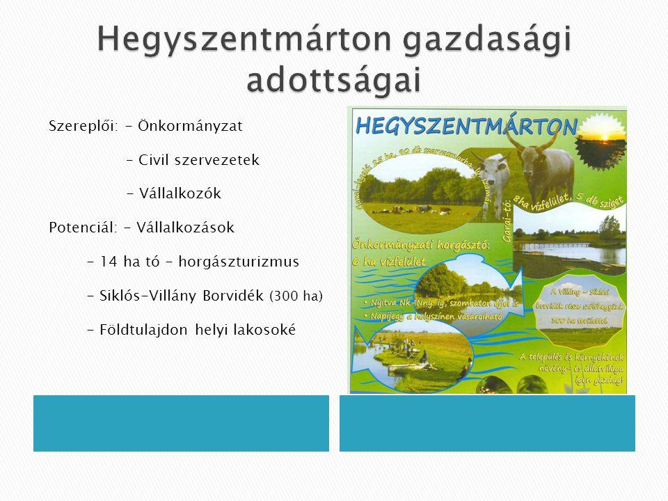  Létrehozta →vállalkozói kezdeményezésre a 3 település önkormányzata (2007.