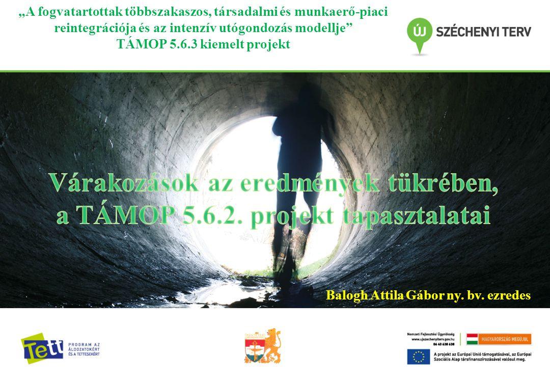 """""""A fogvatartottak többszakaszos, társadalmi és munkaerő-piaci reintegrációja és az intenzív utógondozás modellje TÁMOP 5.6.3 kiemelt projekt Balogh Attila Gábor ny."""