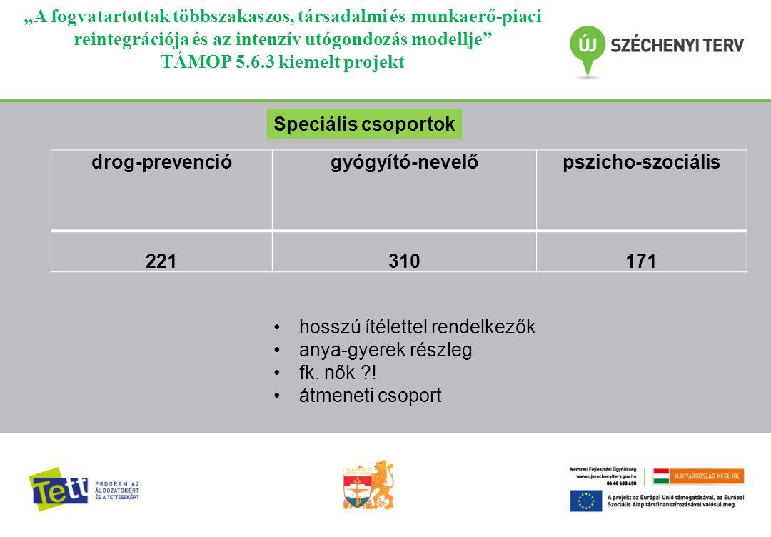 """""""A fogvatartottak többszakaszos, társadalmi és munkaerő-piaci reintegrációja és az intenzív utógondozás modellje TÁMOP 5.6.3 kiemelt projekt Kutatás Az alprojektben a bűnmegelőzés területén dolgozó szakemberek és önkéntesek számára szervezendő képzési programok, illetve az elítéltek társadalmi és munkaerő-piaci reintegrációja érdekében bevezetendő többszakaszos modell tekintetében valósult meg."""