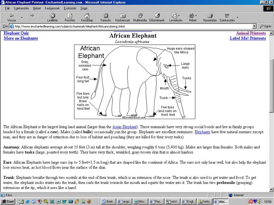 17 Képes szótár http://www.enchantedlearning.com/Dictionary.html