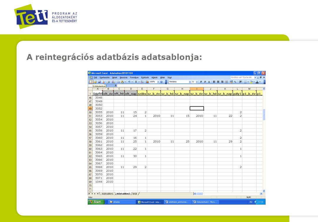 A reintegrációs adatbázis adatsablonja: