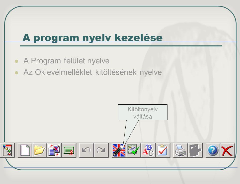 A program nyelv kezelése A Program felület nyelve Az Oklevélmelléklet kitöltésének nyelve Kitöltőnyelv váltása