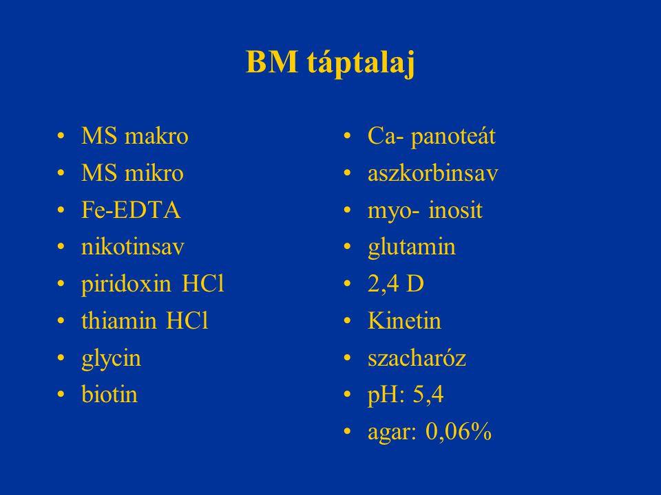 BM táptalaj MS makro MS mikro Fe-EDTA nikotinsav piridoxin HCl thiamin HCl glycin biotin Ca- panoteát aszkorbinsav myo- inosit glutamin 2,4 D Kinetin