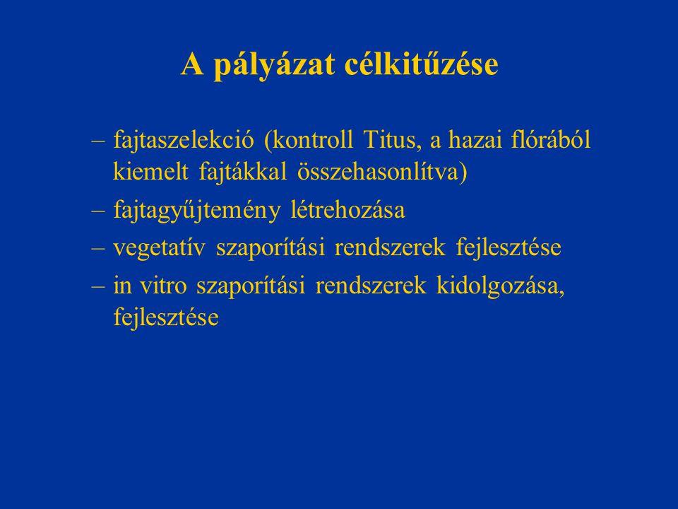 A pályázat célkitűzése –fajtaszelekció (kontroll Titus, a hazai flórából kiemelt fajtákkal összehasonlítva) –fajtagyűjtemény létrehozása –vegetatív sz