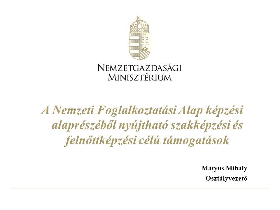 Mátyus Mihály Osztályvezető A Nemzeti Foglalkoztatási Alap képzési alaprészéből nyújtható szakképzési és felnőttképzési célú támogatások