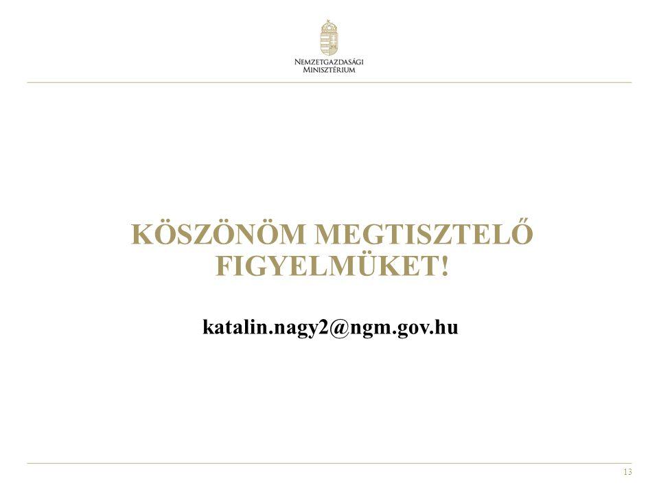 13 KÖSZÖNÖM MEGTISZTELŐ FIGYELMÜKET! katalin.nagy2@ngm.gov.hu