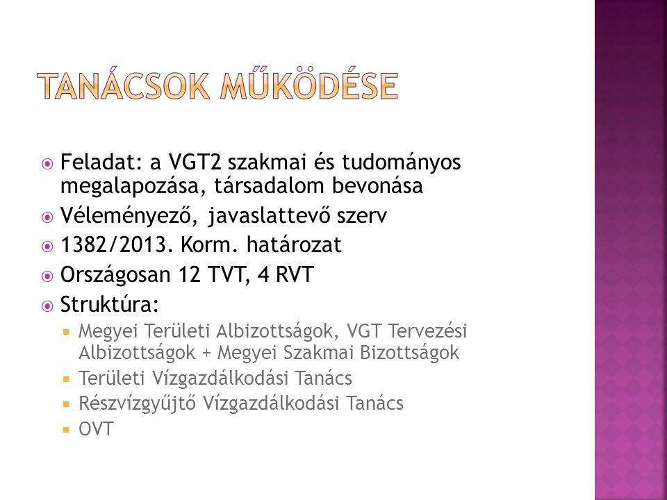  Feladat: a VGT2 szakmai és tudományos megalapozása, társadalom bevonása  Véleményező, javaslattevő szerv  1382/2013. Korm. határozat  Országosan