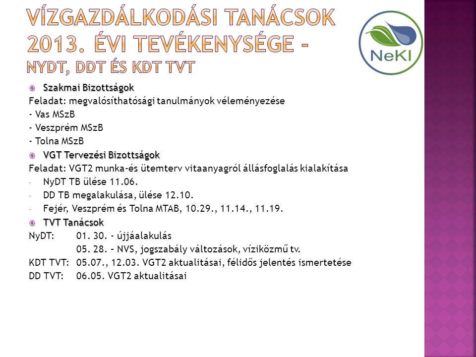  Szakmai Bizottságok Feladat: megvalósíthatósági tanulmányok véleményezése - Vas MSzB - Veszprém MSzB - Tolna MSzB  VGT Tervezési Bizottságok Feladat: VGT2 munka-és ütemterv vitaanyagról állásfoglalás kialakítása - NyDT TB ülése 11.06.