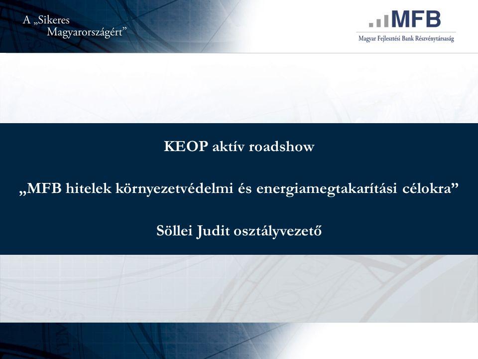 """KEOP aktív roadshow """"MFB hitelek környezetvédelmi és energiamegtakarítási célokra Söllei Judit osztályvezető"""