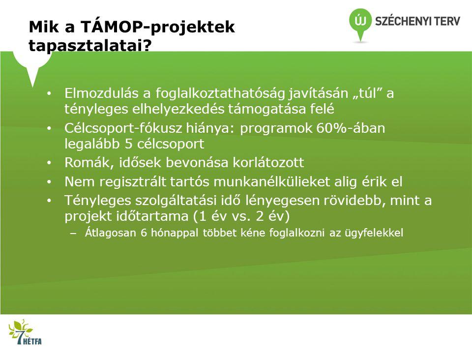 """Mik a TÁMOP-projektek tapasztalatai? Elmozdulás a foglalkoztathatóság javításán """"túl"""" a tényleges elhelyezkedés támogatása felé Célcsoport-fókusz hián"""