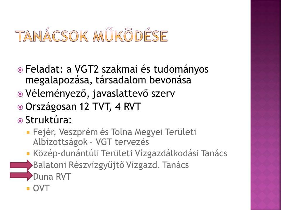  Feladat: a VGT2 szakmai és tudományos megalapozása, társadalom bevonása  Véleményező, javaslattevő szerv  Országosan 12 TVT, 4 RVT  Struktúra: 