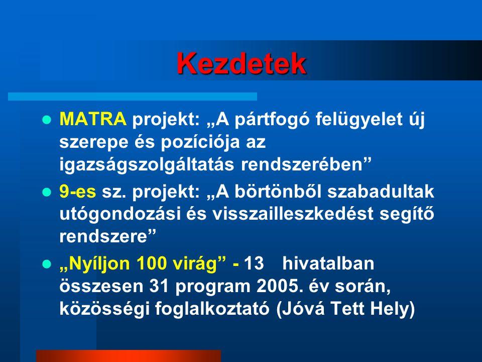 """Kezdetek MATRA projekt: """"A pártfogó felügyelet új szerepe és pozíciója az igazságszolgáltatás rendszerében 9-es sz."""