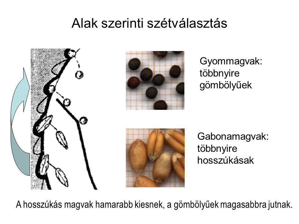 Alak szerinti szétválasztás Gyommagvak: többnyire gömbölyűek Gabonamagvak: többnyire hosszúkásak A hosszúkás magvak hamarabb kiesnek, a gömbölyűek mag
