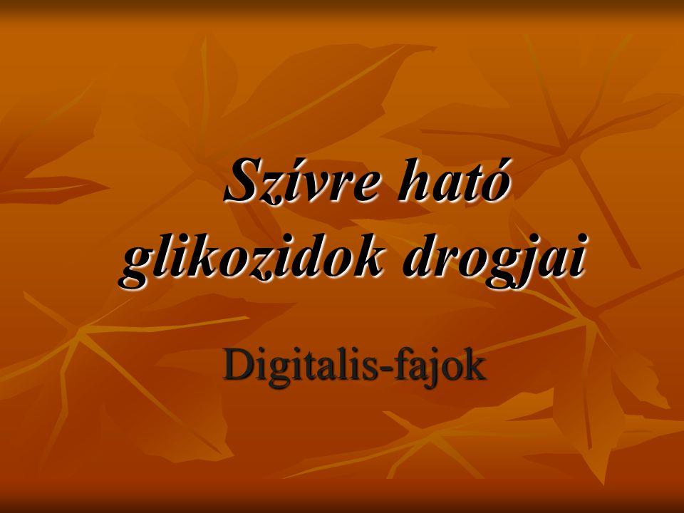 Digitalis purpurea I.