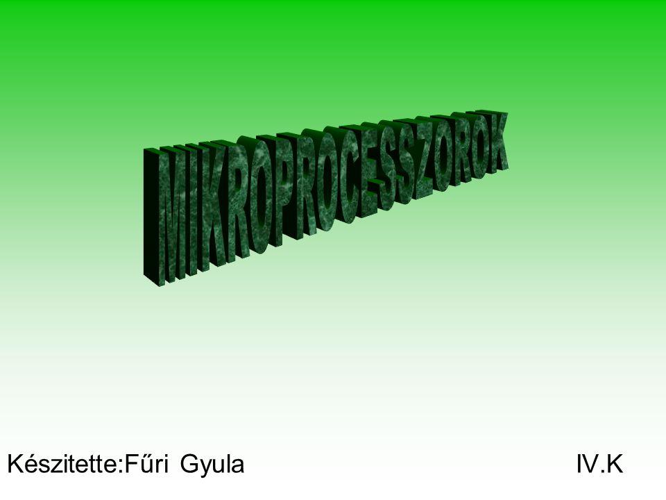 Készitette:Fűri Gyula IV.K