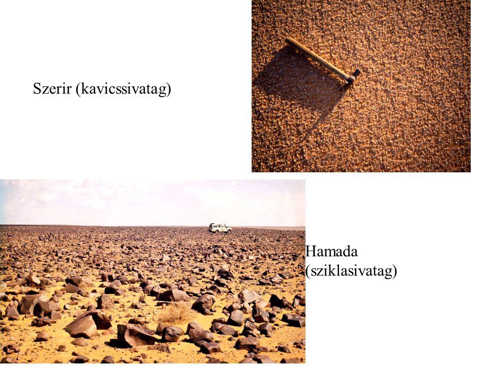 Hamada (sziklasivatag) Szerir (kavicssivatag)