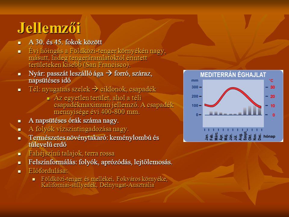Jellemzői A 30. és 45. fokok között A 30. és 45. fokok között Évi hőingás a Földközi-tenger környékén nagy, másutt, hideg tengeráramlatoktól érintett