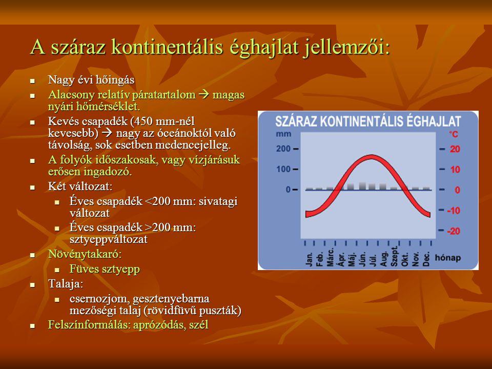 A száraz kontinentális éghajlat jellemzői: Nagy évi hőingás Nagy évi hőingás Alacsony relatív páratartalom  magas nyári hőmérséklet.