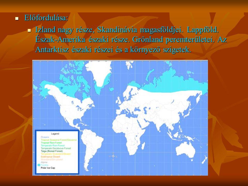Előfordulása: Előfordulása: Izland nagy része, Skandinávia magasföldjei. Lappföld. Észak-Amerika északi része. Grönland peremterületei. Az Antarktisz