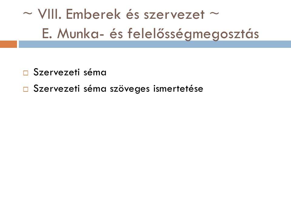 ~ VIII. Emberek és szervezet ~ E. Munka- és felelősségmegosztás  Szervezeti séma  Szervezeti séma szöveges ismertetése
