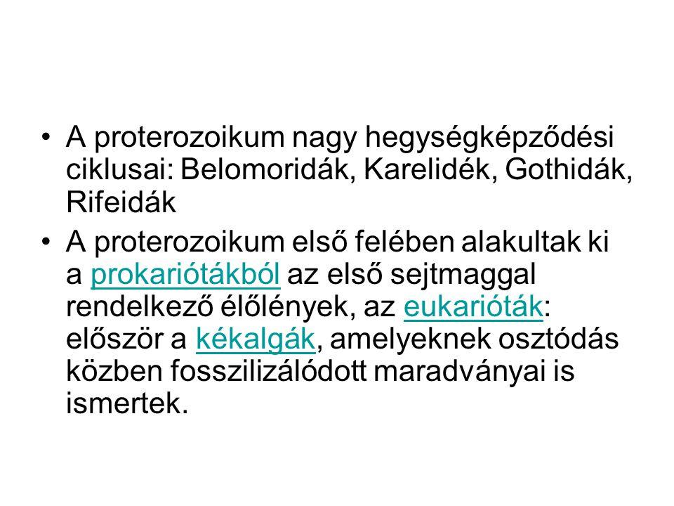 A proterozoikum nagy hegységképződési ciklusai: Belomoridák, Karelidék, Gothidák, Rifeidák A proterozoikum első felében alakultak ki a prokariótákból