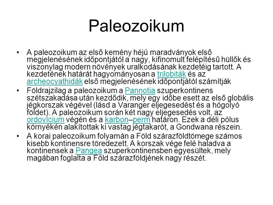 Paleozoikum A paleozoikum az első kemény héjú maradványok első megjelenésének időpontjától a nagy, kifinomult felépítésű hüllők és viszonylag modern n