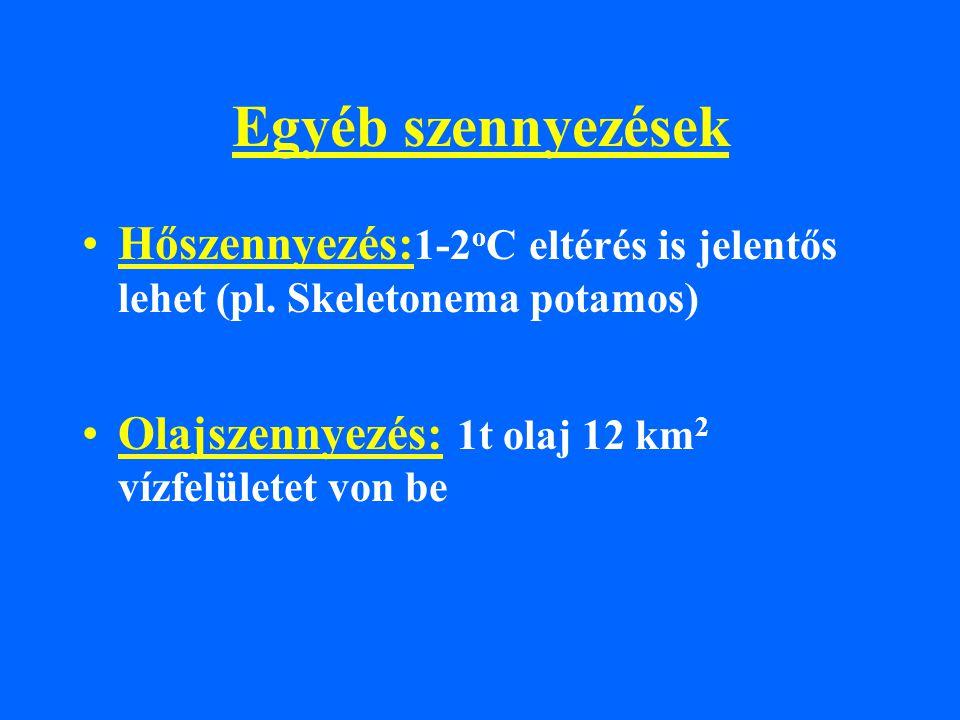 Egyéb szennyezések Hőszennyezés: 1-2 o C eltérés is jelentős lehet (pl. Skeletonema potamos) Olajszennyezés: 1t olaj 12 km 2 vízfelületet von be