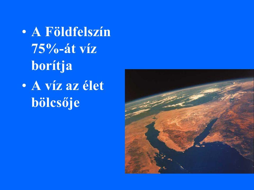 A Földfelszín 75%-át víz borítja A víz az élet bölcsője